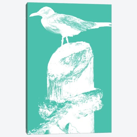 Perching Seabird II Canvas Print #SBT33} by Susan Bryant Art Print