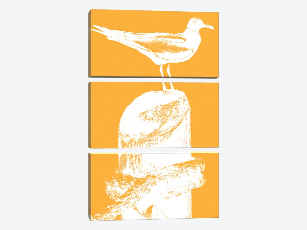 Perching Seabird III by Susan Bryant 3-piece Canvas Art Print