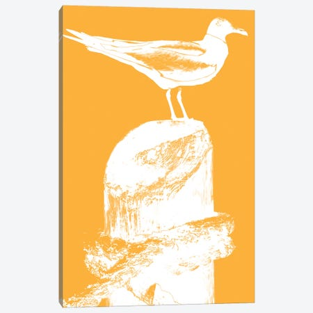 Perching Seabird III Canvas Print #SBT34} by Susan Bryant Canvas Wall Art
