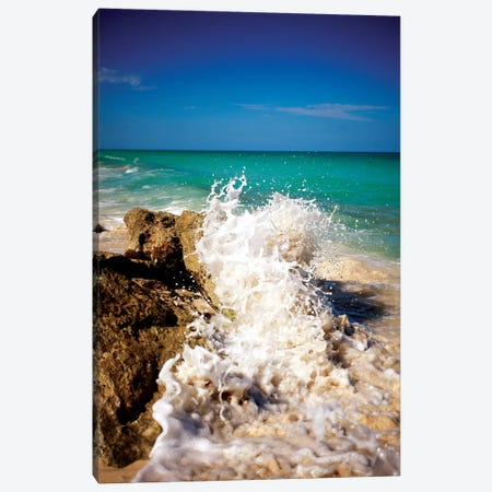 Rising Tide II Canvas Print #SBT39} by Susan Bryant Canvas Art Print
