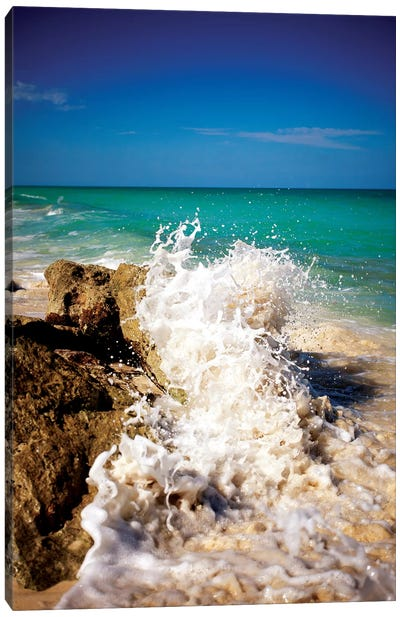 Rising Tide II Canvas Art Print