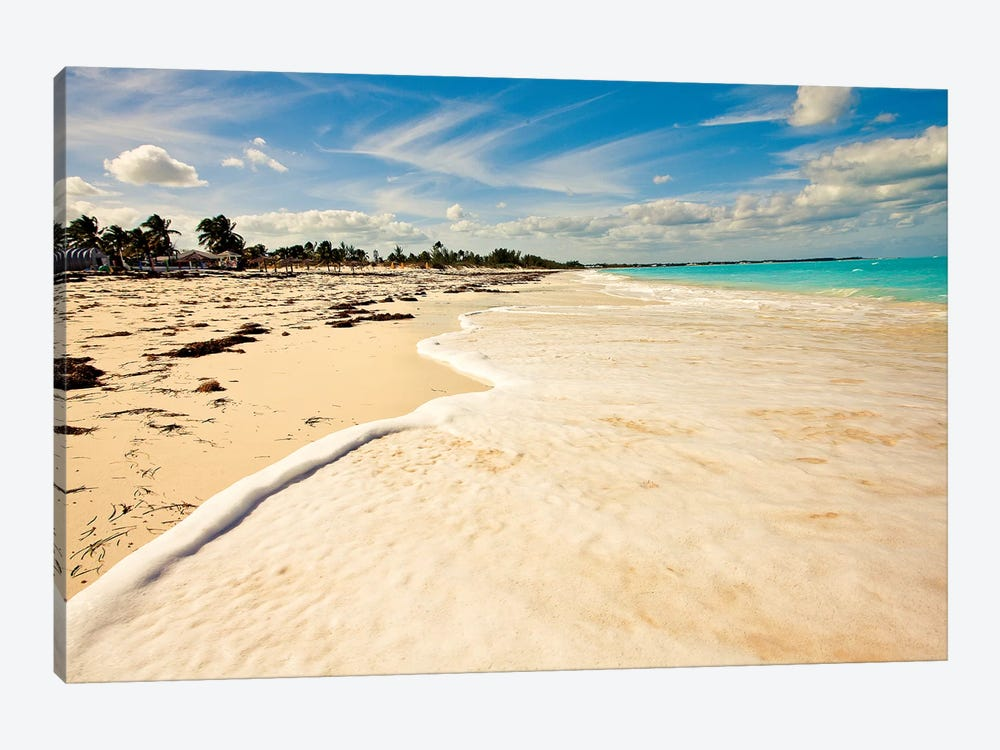 Walking at High Tide 1-piece Canvas Print