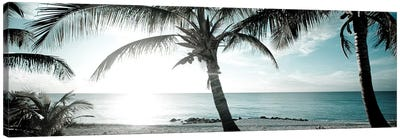 Cool Bimini I Canvas Art Print