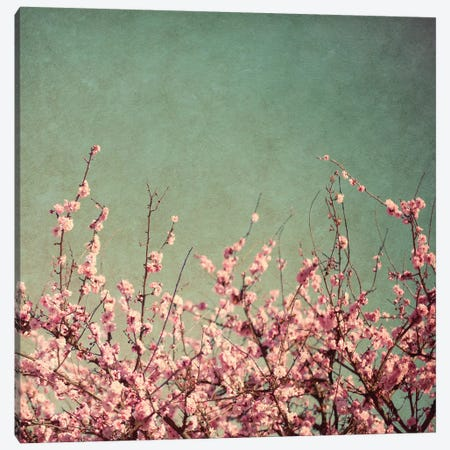 Springtime I Canvas Print #SBT75} by Susan Bryant Canvas Wall Art