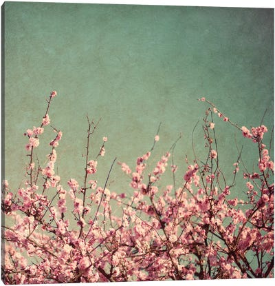 Springtime I Canvas Art Print