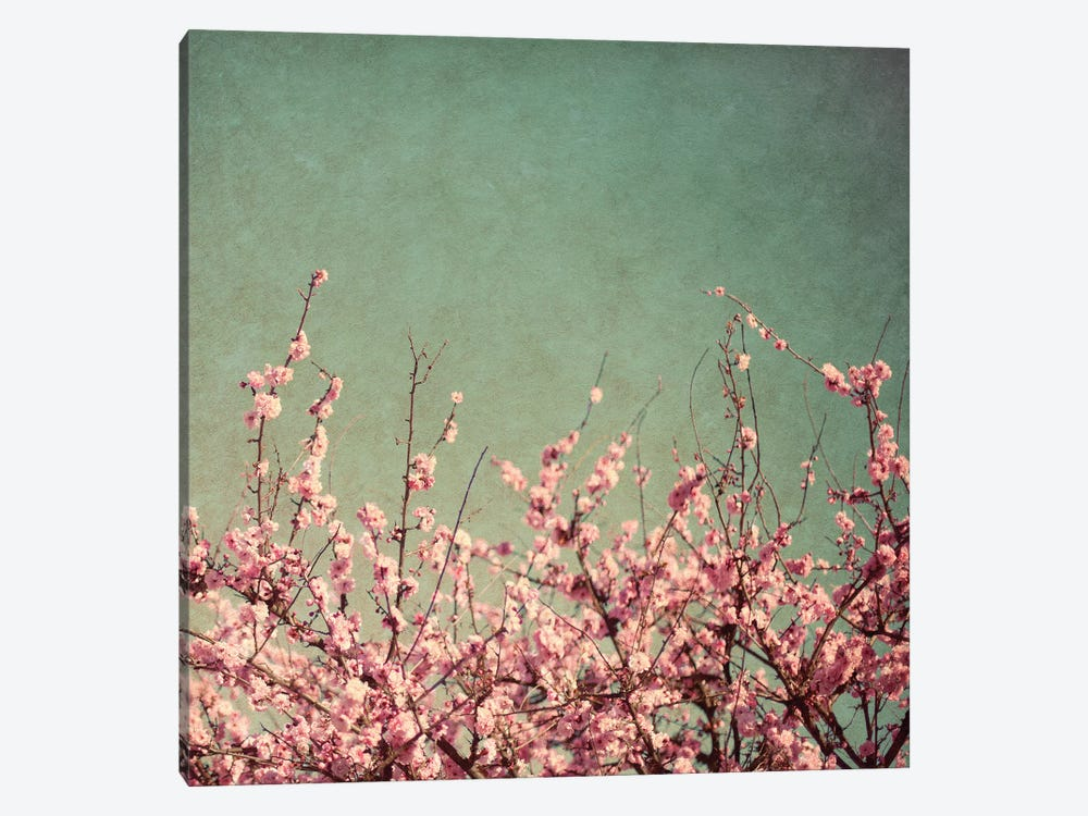 Springtime I by Susan Bryant 1-piece Canvas Wall Art
