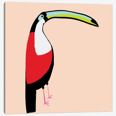 Abstract Toucan Canvas Print #SBT84} by Susan Bryant Canvas Print