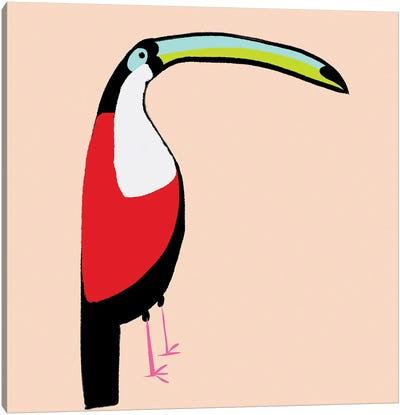 Abstract Toucan Canvas Art Print