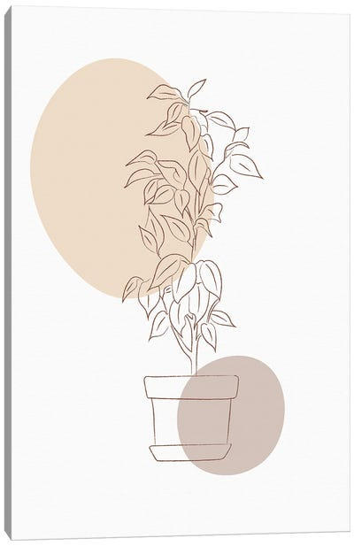 Minimal Flourish Pot Canvas Art Print