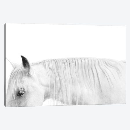 White On White Canvas Print #SCA15} by Samantha Carter Canvas Artwork
