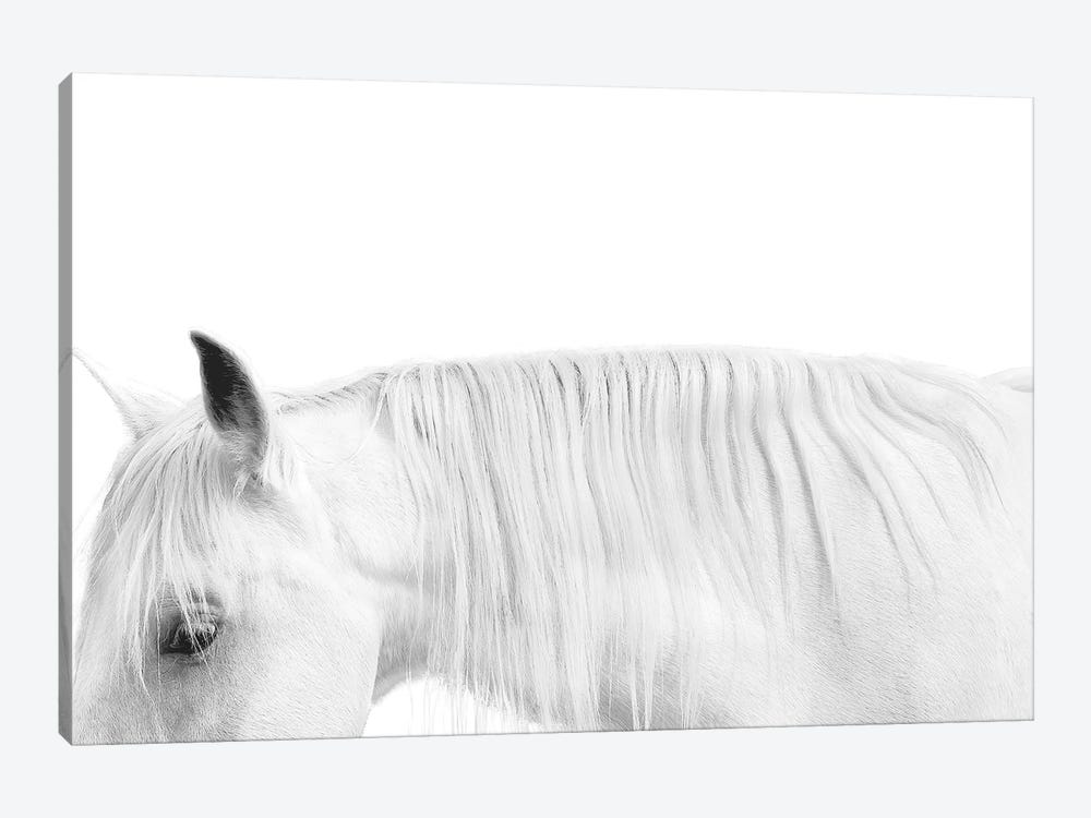 White On White by Samantha Carter 1-piece Canvas Print