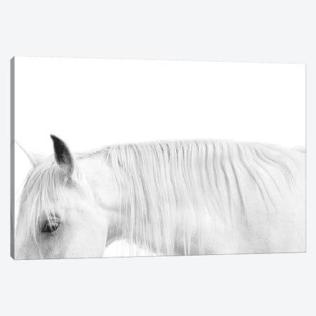 White On White 3-Piece Canvas #SCA15} by Samantha Carter Canvas Artwork