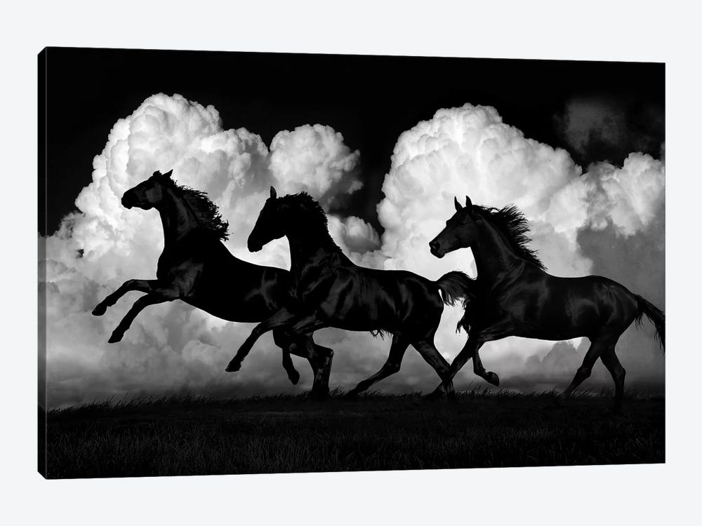 Wild Horses 1-piece Canvas Art