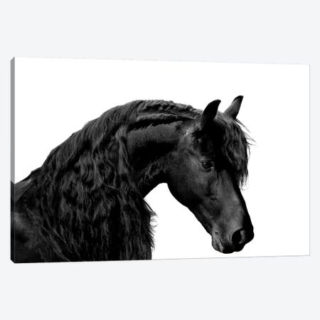 Classic Black I Canvas Print #SCA2} by Samantha Carter Canvas Wall Art