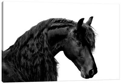 Classic Black I Canvas Art Print