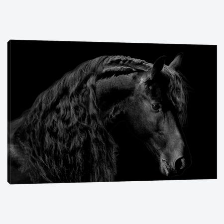 Classic Black II Canvas Print #SCA3} by Samantha Carter Canvas Artwork