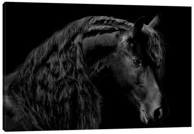Classic Black II Canvas Art Print