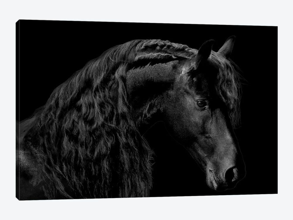 Classic Black II by Samantha Carter 1-piece Art Print
