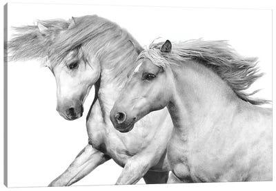 Duo I Canvas Art Print
