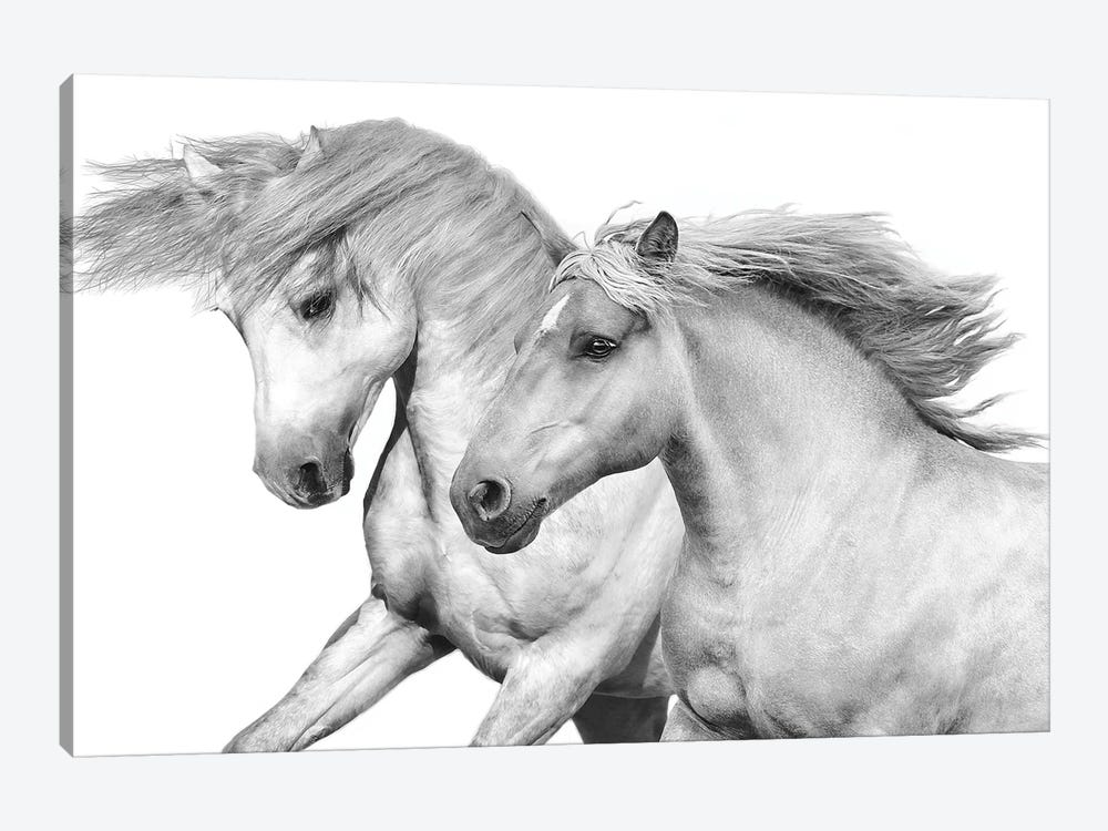 Duo I by Samantha Carter 1-piece Art Print