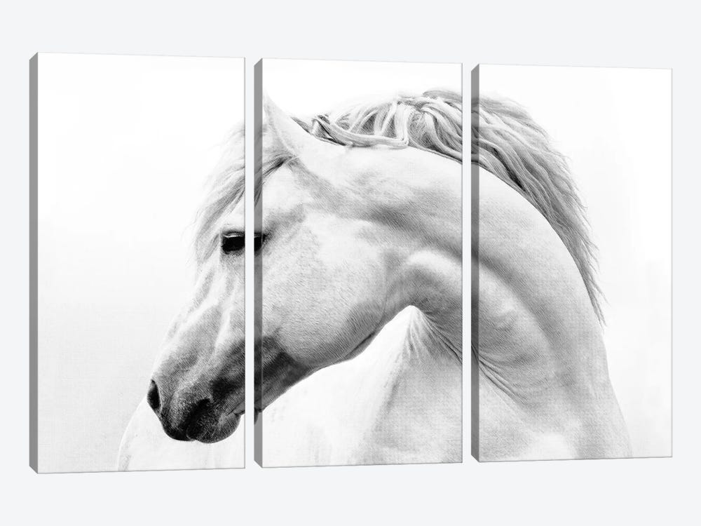 Head Turner by Samantha Carter 3-piece Canvas Artwork