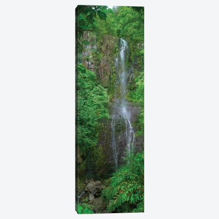 Maui Waterfall Canvas Print #SCB44} by Scott Bennion Canvas Artwork
