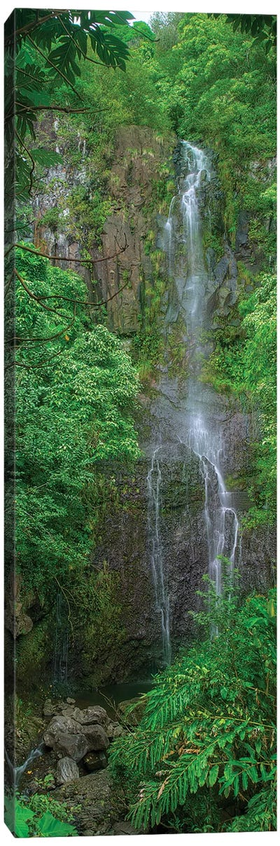 Maui Waterfall Canvas Art Print