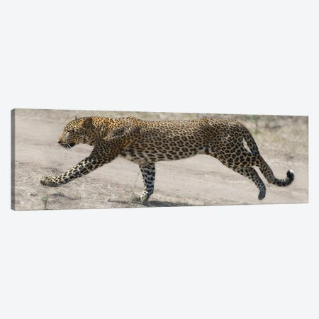 On The Run Canvas Print #SCB49} by Scott Bennion Art Print