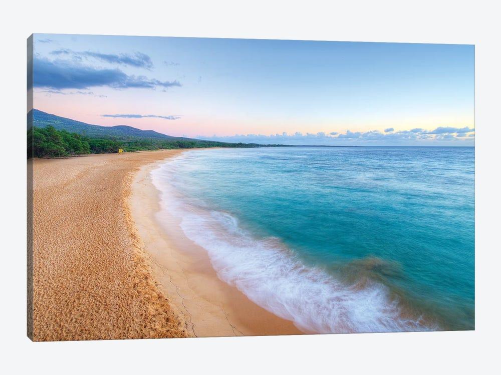 Big Beach Maui Canvas Art Print By Scott Bennion Icanvas