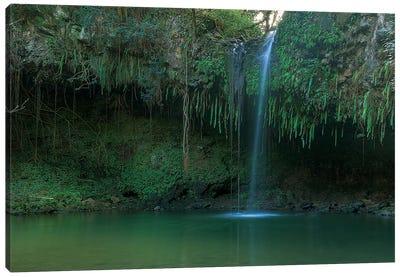Twin Falls - Maui Canvas Print #SCB66
