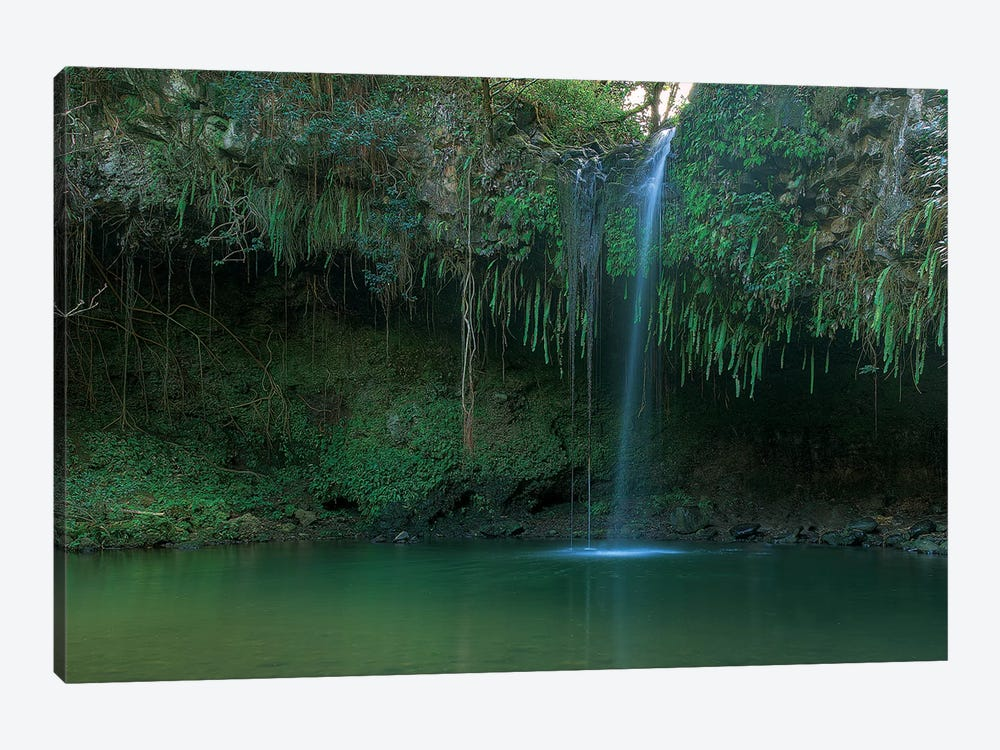 Twin Falls - Maui by Scott Bennion 1-piece Canvas Print