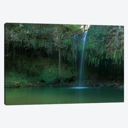 Twin Falls - Maui Canvas Print #SCB66} by Scott Bennion Canvas Art