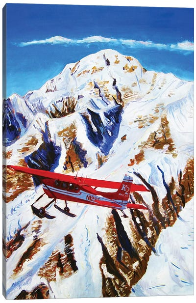 Flight Around Denali Canvas Art Print