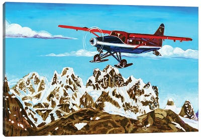 Ruth Glacier Landing Canvas Art Print