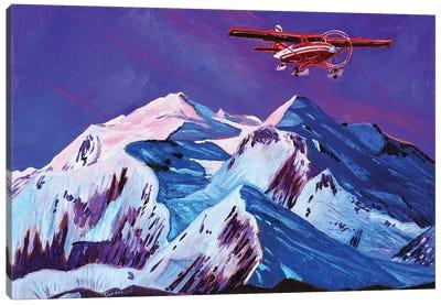 Talkeetna Retreat Canvas Art Print