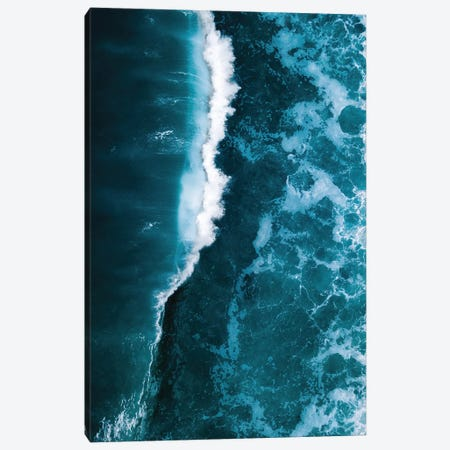 Wild Blue Ocean Wave Canvas Print #SCE114} by Michael Schauer Canvas Print
