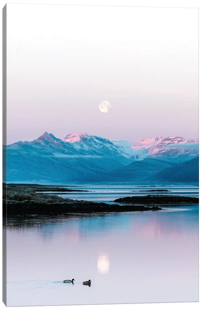 Ducks Swimming In Front Of A Mountain And Moonrise Background In Iceland Canvas Art Print