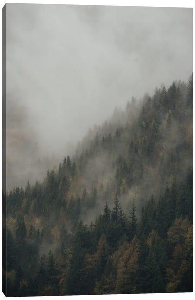 Foggy Mountain Forest Canvas Art Print