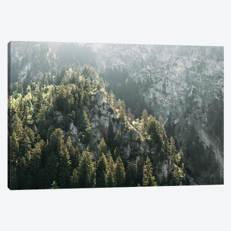 Mountain Forest On A Sunny Hazy Day Canvas Print #SCE32} by Michael Schauer Canvas Print