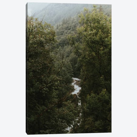 River In A Mountain Forest Canvas Print #SCE37} by Michael Schauer Canvas Wall Art
