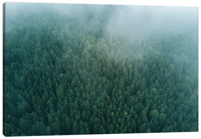 Forest From Above Beneath The Clouds Canvas Art Print