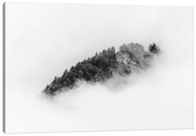 Black And White Forest Island In Minimal Clouds Canvas Art Print