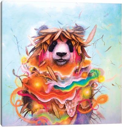 Carnival Cocoon Canvas Art Print