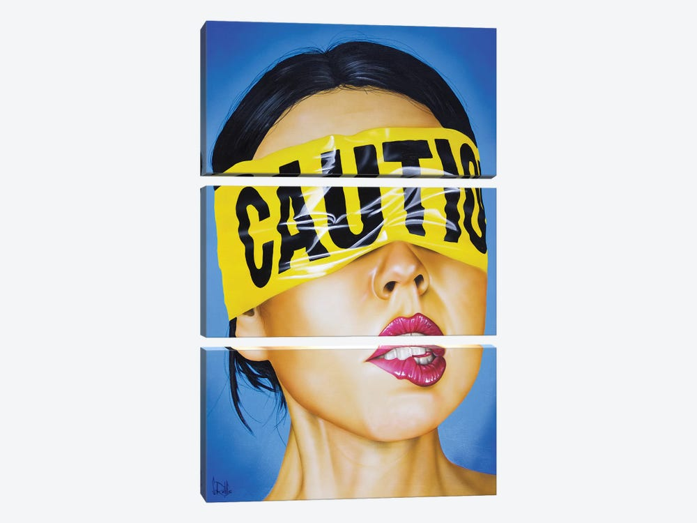 Cautionary Tale 3-piece Canvas Wall Art