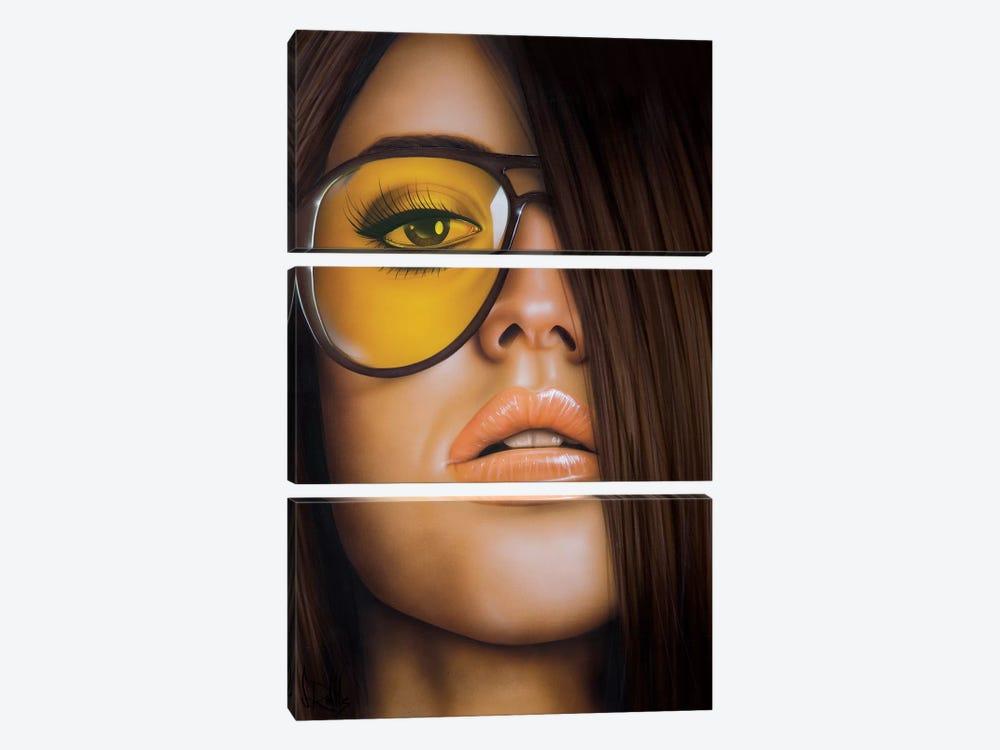 The Good Side by Scott Rohlfs 3-piece Canvas Artwork