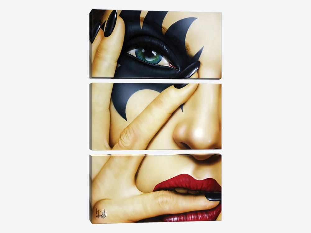 I Knew You Were Trouble by Scott Rohlfs 3-piece Canvas Art