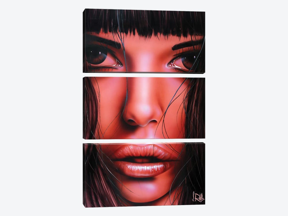 I See Red by Scott Rohlfs 3-piece Canvas Art Print
