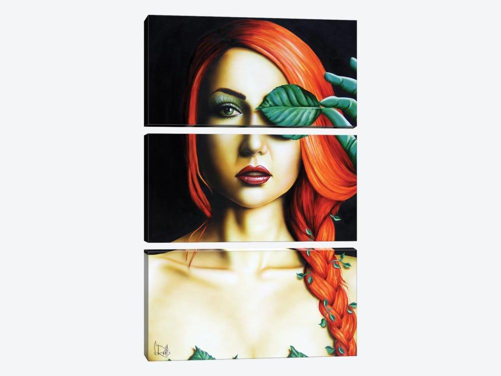 Poison Ivy by Scott Rohlfs 3-piece Canvas Art Print