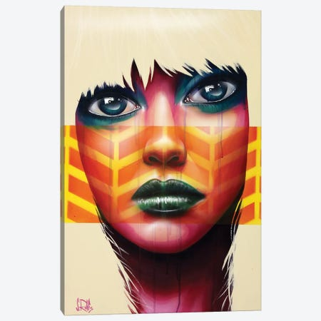 The 6th Sense Canvas Print #SCR71} by Scott Rohlfs Canvas Art