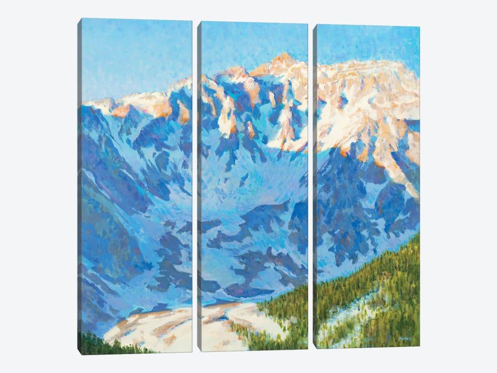Shadow Play by Scott Brems 3-piece Canvas Artwork